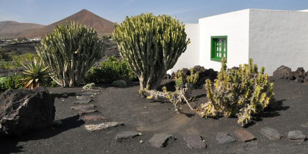 Unenäoline saar Lanzarote