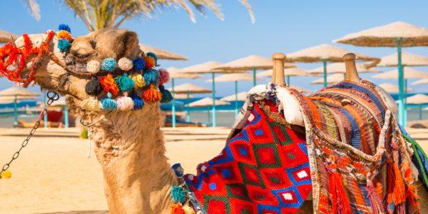 Hurghada - kuurort Punase mere kaldal